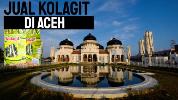 Jual Kolagit Obat Diabetes Di Aceh – Banda Aceh | WA 081286107878