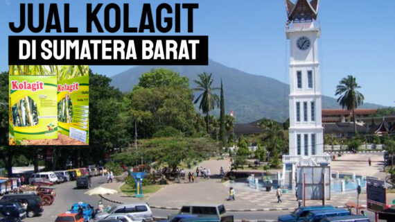 Jual Kolagit Obat Diabetes di Sumatra Barat – Padang | WA 081286107878
