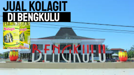 Jual Kolagit Obat Diabetes di Bengkulu – Bengkulu | WA 081286107878