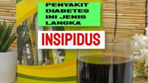 diabetes_insipidus_adalah