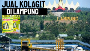 jual_kolagit_di_bandar_lampung
