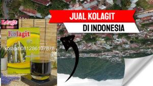 kolagit_asli_indonesia