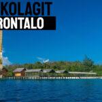 Jual Kolagit Obat Diabetes di Gorontalo | WA 081286107878